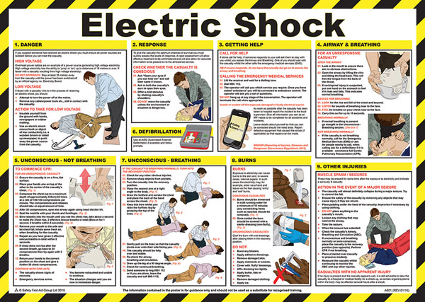 SHOCK TREATMENT GUIDE  - CM1301